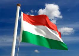 SVC Vengrii