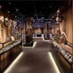 Geneva muzei