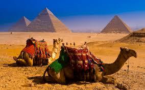 Египет вводит электронные визы
